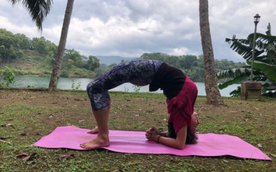 Developing a Home Yoga Practice